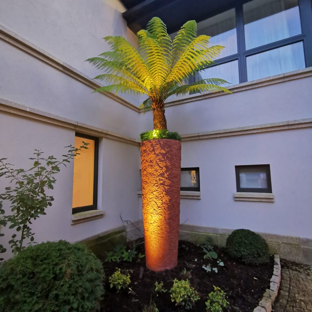 Lighting maximises the impact of interesting plants like these ferns